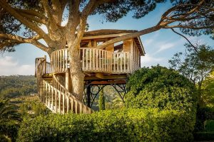 Treehouse-8-scaled.jpg